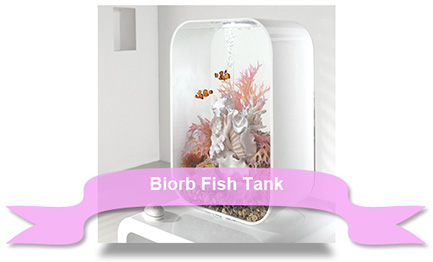 Xmas Fish Tank